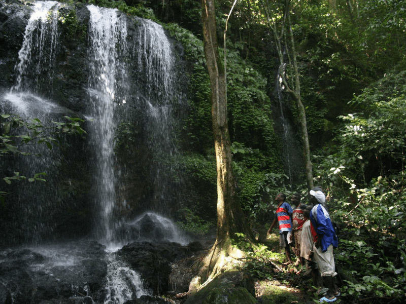 Waterfall - Central African Republic